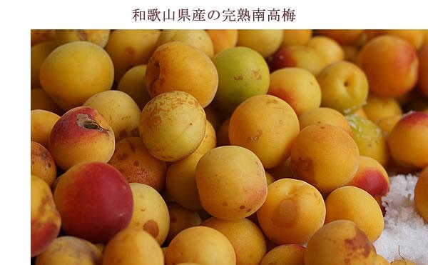 和歌山県産の完熟南高梅