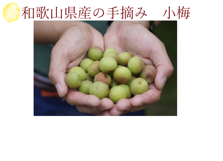和歌山県産の手摘み小梅を使用